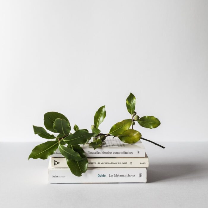 plants and books stacked
